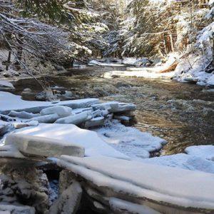 Sentier du parc Call's Mills en hiver